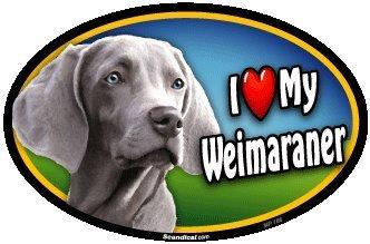 (I Love My Weimaraner Oval Magnet)