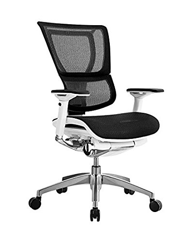 iOO Eurotech Office Ergonomic Chair Black Mesh and White Frame (NO Head Rest) ()