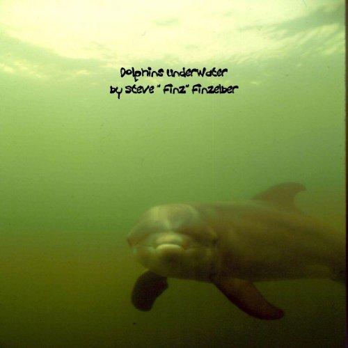 - Dolphins UnderWater