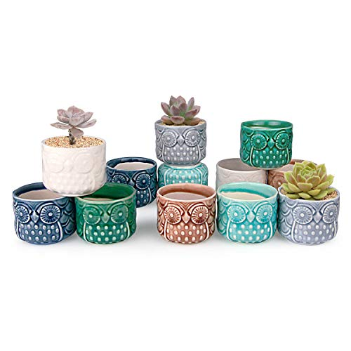 T4U Ceramic Succulent Pots Mini Size Ice Crack Planter Set of 12, Cute Owl Bonsai Pots Home Office Decoration Desktop Windowsill Gift for Baby Shower Birthday