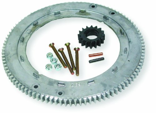 Oregon 31-056 Flywheel Ring Gear Replacement for Briggs & Stratton 399676, 392134, 696537