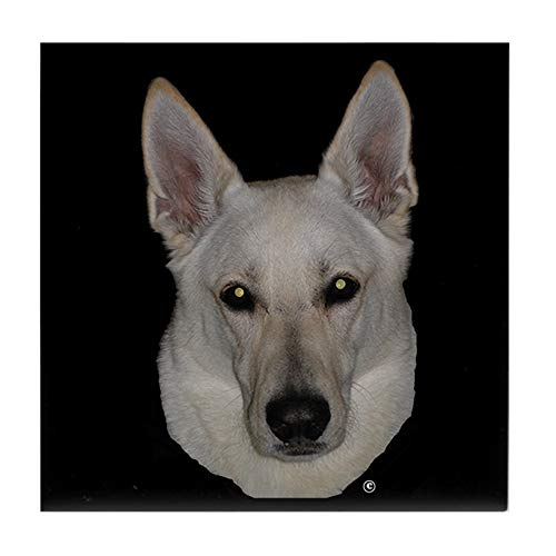 CafePress White German Shepherd Tile Coaster, Drink Coaster, Small Trivet ()