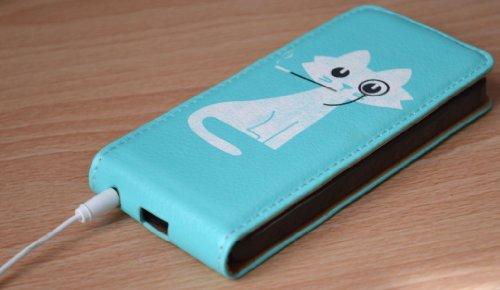 Nouveau Create&Case « design artistique : Reine Chat» : design de luxe, de haute qualité, unique et coloré pour étui de cuir, coque arborant un dessin, un motif pour l'iPhone 5 proposé dans un emballa