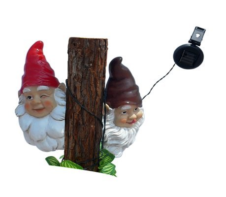 Garden Gnome String Lights in US - 5