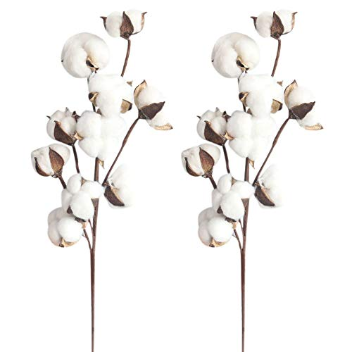 Mikilon 21 inch Cotton Stems Farmhouse Decoration Floral Picks - Rustic Style Vase Filler Decoration Artificial Flower, Pack of 2