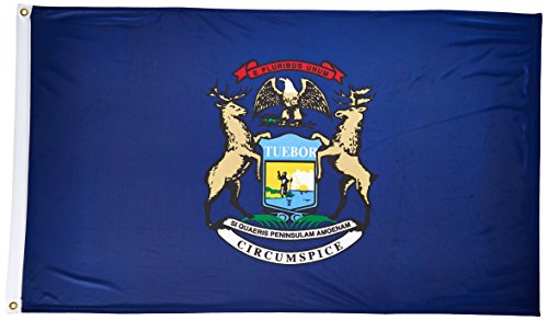 Online Stores Michigan Superknit Polyester Flag, 3 by (Online Party Store)