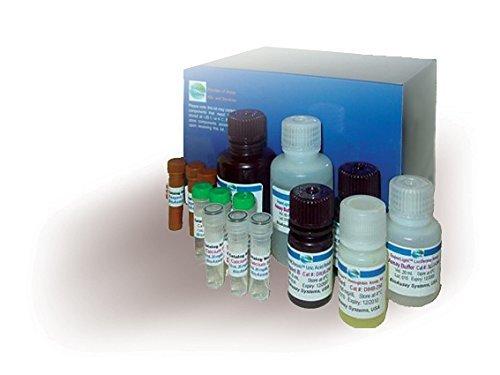 Glycolysis Assay Kit (ECGL-100) by BioAssay Systems