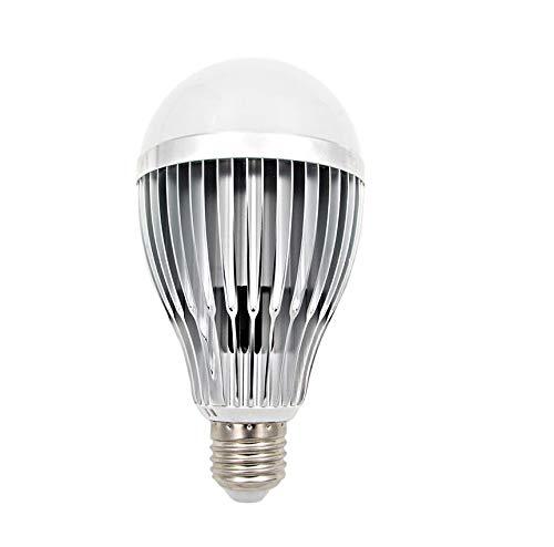 Fulight Full-Spectrum A19 LED Light Bulbs- 12W (100W Equivalent), Daylight White 6000K, E27 Medium Base - for Reading, Kids Room, Makeup, Food Stores, Studio, Artworks & Medical Lighting
