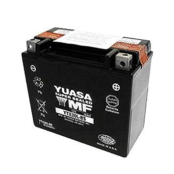 Amazon.com: Yuasa YTX20L-BS última intervensión de ...
