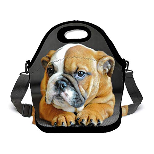 (BOYO ME Compact Zipper Lunch Bag Insulated Lunch Box - Large Unique English Bulldog Puppy Dog - Meal Prep Lunch Box Food Containers for Men Women Adults Kids Children, Picnic)