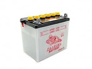Batería 12N24-3 A para tractores cortacésped; se envía sin ácido ...