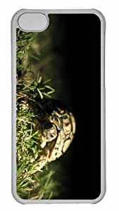 Customized iphone 5C PC Transparent Case - Turtle Close Up Personalized Cover