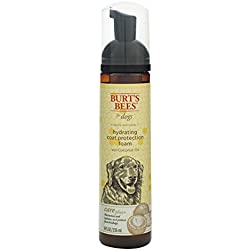 Burt's Bees For Dogs Care Plus Natural Hydrating Coat Protecting Foam With Coconut Oil | Dog Moisturizing Foam, 8 Ounces