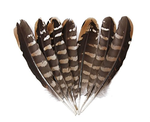 Hgshow Silver Pheasant Feathers 5-7 inches,hand sorting,per pack of 40]()