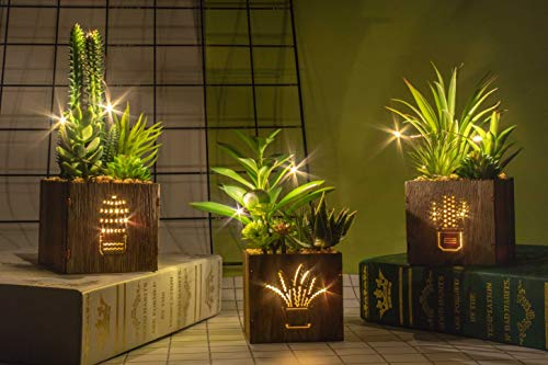 BEGONDIS Set of 3 Artificial Succulents with Led Lights in Wooden Box, Artificial Plants Plastic Fake Topiary for Home/Office Decorations, Table Centerpiece (Light In The Box Real Or Fake)