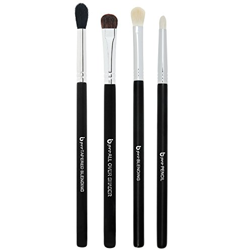 shes Includes 4 Must Have Eyeshadow Brush Set: Pencil, Tapered Blending, All Over Shader, Blending ()