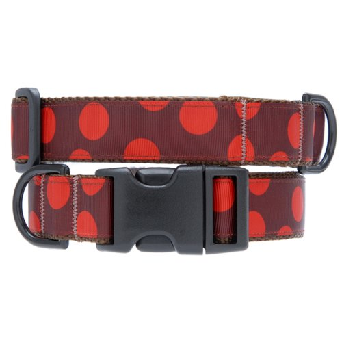 Max & Zoey Polka Dot Dog Collar, X-Small, Brown Red