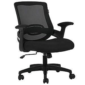 Hbada Chaise de Bureau Ergonomique avec Support Lombaire, Siège de Bureau en Maille, Fauteuil avec Accoudoir et Hauteur…