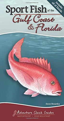 Sport Fish of the Gulf Coast & Florida (Adventure Quick Guides)