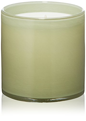 LAFCO New York House & Home Candle, Olive Blossom, 15.5 (Olive Blossom)