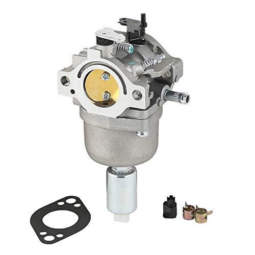 Carburateur 14 PS 15 PS 16 PS 17 PS 18 PS voor B-r-i-g-s en S-t-r-a-t-o-n carburateur 799727 698620 carburateur
