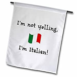 Modern Funny Quotes Im Not Yelling Im Italian Home Yard Garden Flag Indoor Outdoor Decor Double Sides Polyester Flag 12 x 18 Inch