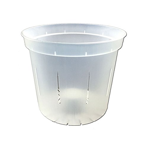 4'' Slotted Clear Orchid Pots - 3 Pack (Crystal Clear) by rePotme