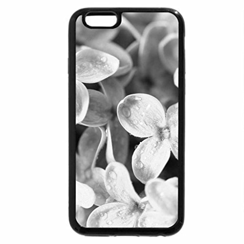 iPhone 6S Plus Case, iPhone 6 Plus Case (Black & White) - Dainty Flowers