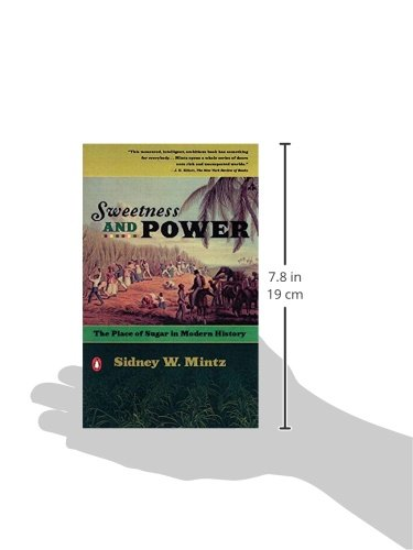 SWEETNESS AND POWER EBOOK DOWNLOAD