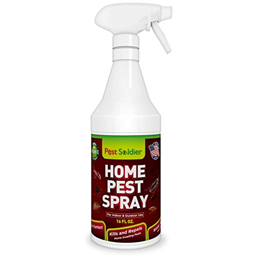 pest-soldier-organic-home-pest-control-spray-kills-repels-ants-roaches-spiders-and-other-pests-guara