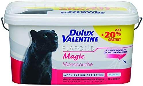 Dulux Valentine 5110873 Peintures Murs Et Plafonds Amazon