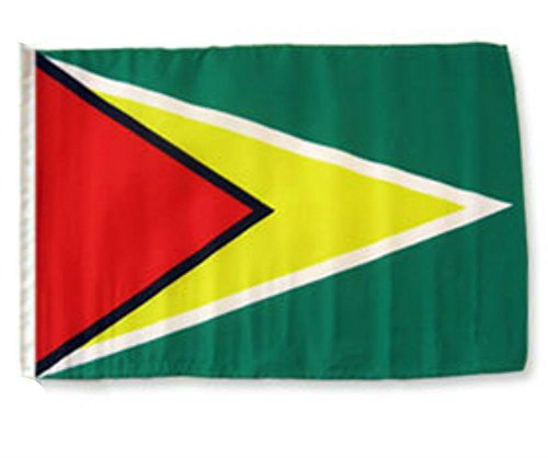 ALBATROS 12 inch x 18 inch Guyana Sleeve Flag for use on Boat, Car, Garden for Home and Parades, Official Party, All Weather Indoors Outdoors]()