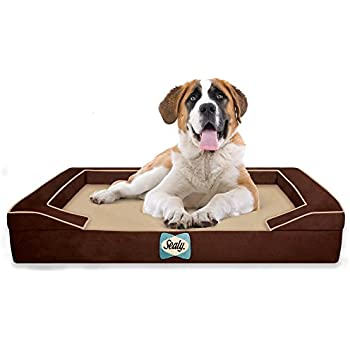 Amazon.com : Sealy Dog Bed for Dogs, X-Large : Pet Supplies