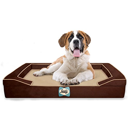 Sealy Dog Bed for Dogs, X-Large