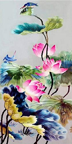 Diy Oil Paint by Number Kit for Adults Beginner 16x20 Inch - Birds Lotus Flowers,Drawing with Brushes Christmas Decor Decorations Gifts (Framed)
