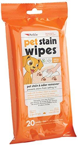 Petkin Pet Mancha toallitas, Pack de 20: Amazon.es ...