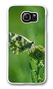 Armenia Butterfly Custom Samsung Galaxy S6/Samsung S6 Case Cover Polycarbonate Transparent