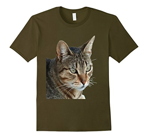 Mens Stunning Tabby Cat Close Up Portrait Vector T-Shirt Large Olive