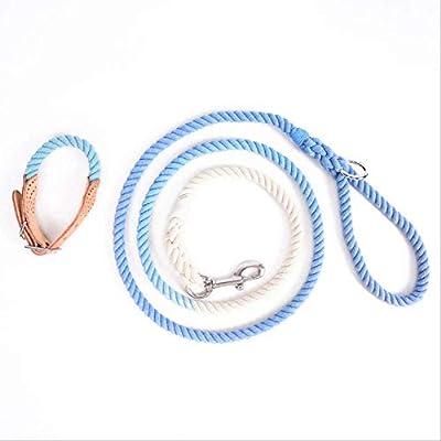 WDWX Set de Collar de Correa de algodón para Perros Gradient ...