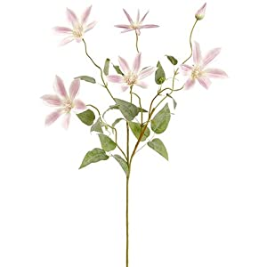 "37"" Clematis Spray Cream Lavender (pack of 12) 25"