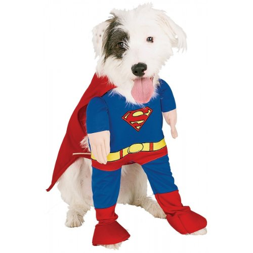 Deluxe Superman Medium Pet Costume]()