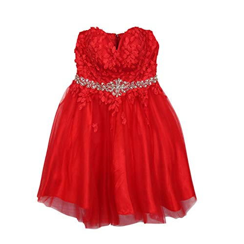 Appliques Polyester Red Heart (Cinderella Womens Floral Applique Sweetheart Neckline Dress Red Extra Large)