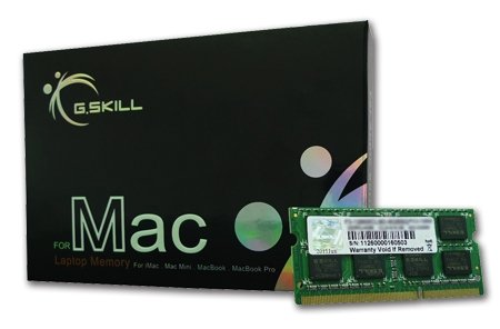 G.SKILL 4GB 204-Pin DDR3 SO-DIMM DDR3L 1600 (PC3L 12800) Laptop Memory Model FA-1600C11S-4GSQ