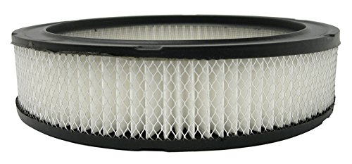 ACDelco A331C Professional Air Filter ()