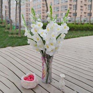Buy artificial fake silk flower artificial gladiolus 80cm white art artificial fake silk flower artificial gladiolus 80cm white art arrangement mightylinksfo