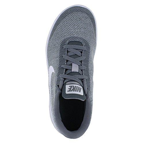 Nike Kvinna Flex Erfarenhet 7 Löparsko Wolf Gråvit Sval Grå
