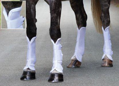 Shires, Airflow Turnout Socks White ()