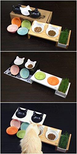 ViviPet Cat Dining Table 15176 Tilted Platform Pet Feeder  : 41iajyBrq2L from www.alumigogo.com size 250 x 500 jpeg 29kB