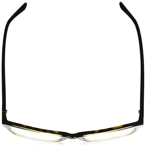 Para Ralph Top 51 dark Havana Mujer Gafas Lauren De 0rl6169 Monturas Transparent wSrX4Sq