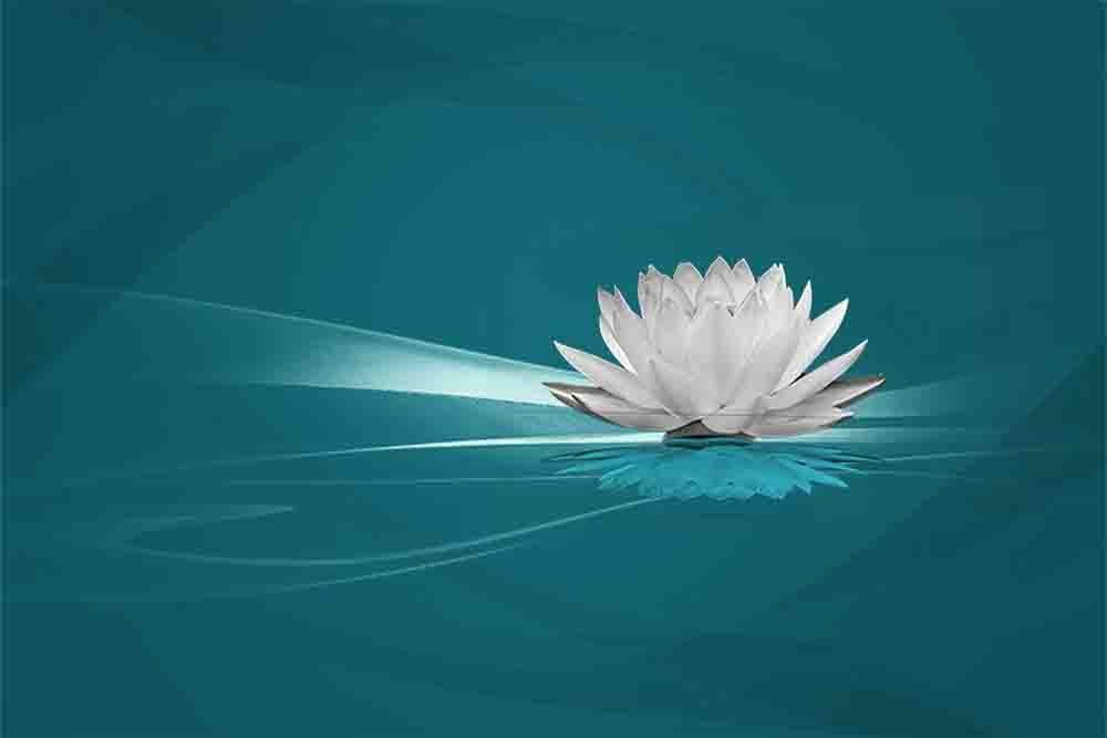 Water Lily - 5 Decor Colors, Teal Canvas Wrapped Home Decor Wall Art Seascape Ocean Pictures on Canvas. Wall art for Living Room Bedroom Beach (Blue, 20x30)